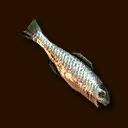 Fisch ~ Fish ~ Рыба