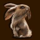 Säbelzahnkaninchen ~ ~ Саблезубый кролик