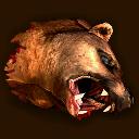 Bärenkopf ~ ~ Голова медведя