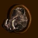 Jagdtrophäe Wildschwein ~ ~ Охотничий трофей: кабан