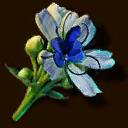 Entsteinerungswürfel ~ ~ Экзотический цветок