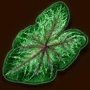 Sonderbares Blatt ~ ~ Странный лист